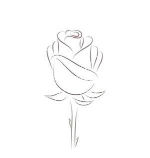 rose drawing easy drawings paintingvalley