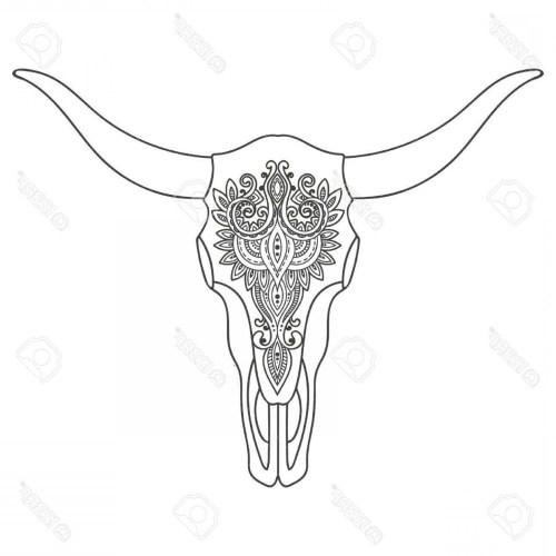 small resolution of 1560x1560 steer skull drawing