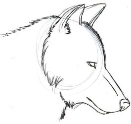 wolf easy drawing simple drawings sketches sketch cool wolves beginners draw anime step howling tutorials guy paintingvalley dog hairstyle clipartlove