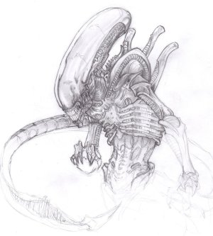 xenomorph alien deviantart predator drawing easy aliens sketch chrisozfulton drawings giger rough tattoo creature covens oz paintingvalley fan
