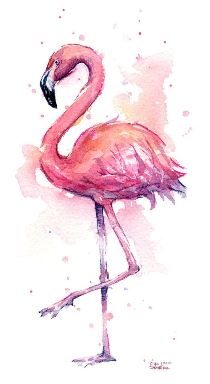 watercolor paintings of flamingos