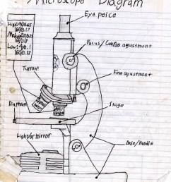 1024x1325 a sketch diagram of a microscope binocular microscope sketch [ 1024 x 1325 Pixel ]