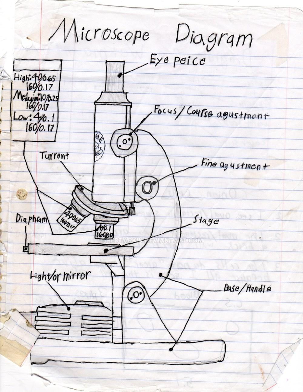 medium resolution of 1024x1325 a sketch diagram of a microscope binocular microscope sketch