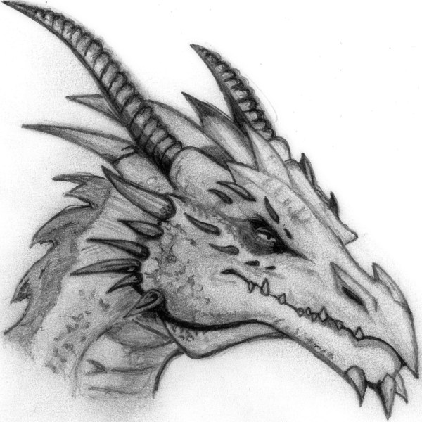 Dragon Pencil Sketch Explore