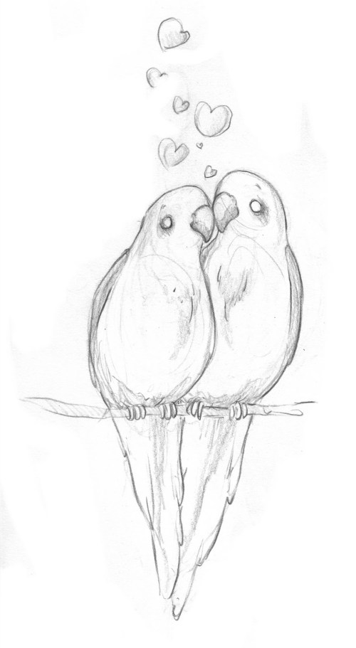 small resolution of 878x1600 pencil drawings of lovebirds simple pencil drawing of birds images lovebird sketch