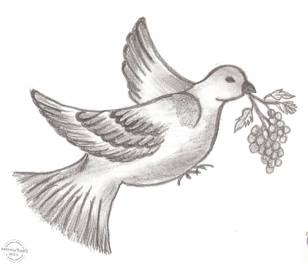 hight resolution of 1024x878 bird pencil sketch photo pencil drawing pictures of birds pencil pencil sketch pictures of