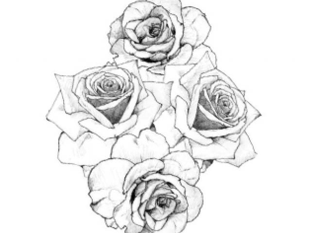 Rose Tattoo Sketch Tumblr At Paintingvalleycom Explore Collection