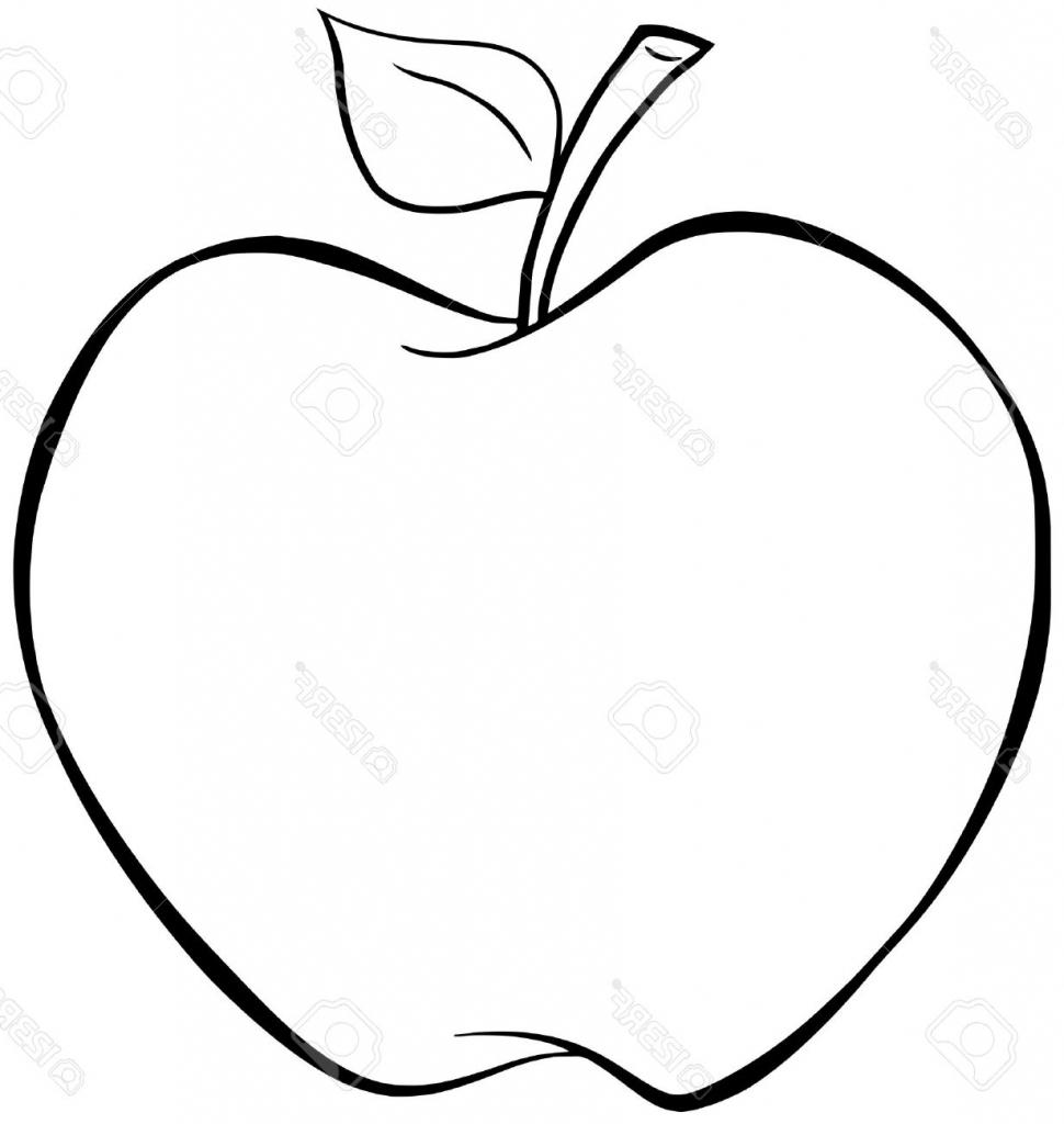 sketch of apple fruit