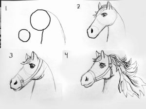 sketching beginners step horse draw easy sketches chinese zodiac symbol class
