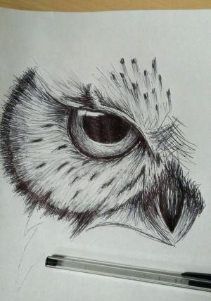 beginners sketching sketch drawing sketches paintingvalley explore
