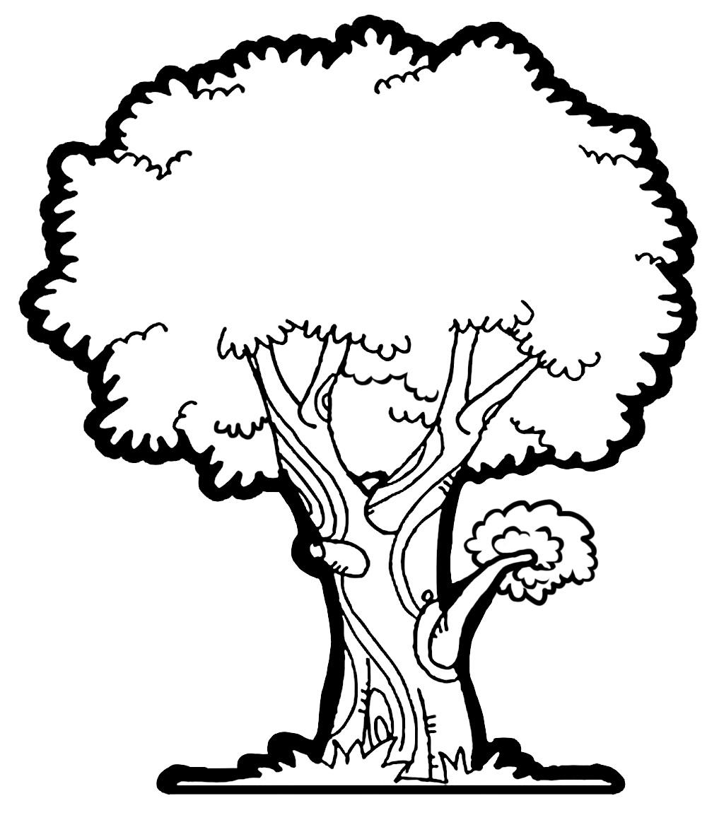 tree sketch clip art