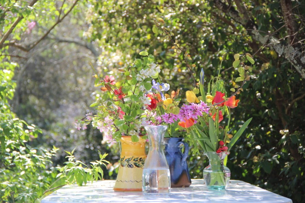 Day classes Provence our garden