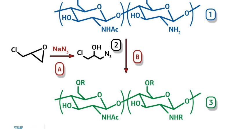 RUDN University chemists to obtain new material for antibacterial food coatings based on natural polymer chitosan
