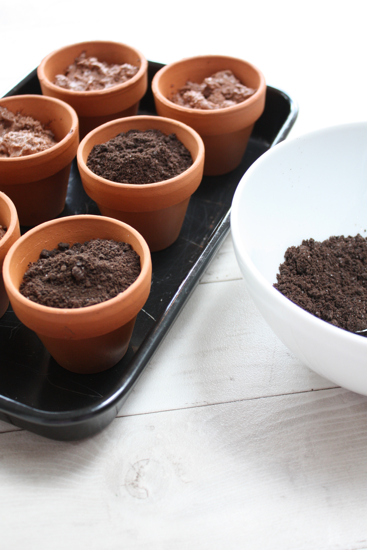 Chocolate mousse flowerpots with white chocolate carrots