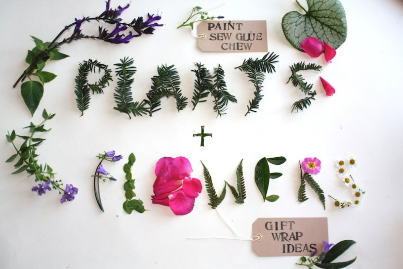 Plants and flowers gift wrap