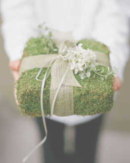 Moss Gift wrap