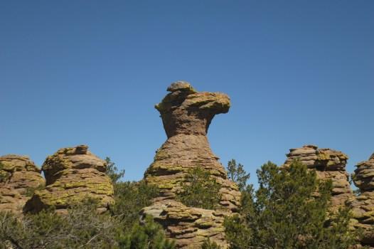 Camel's Head
