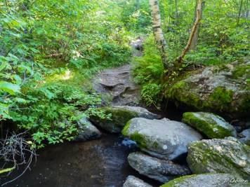 One of many creek crossings