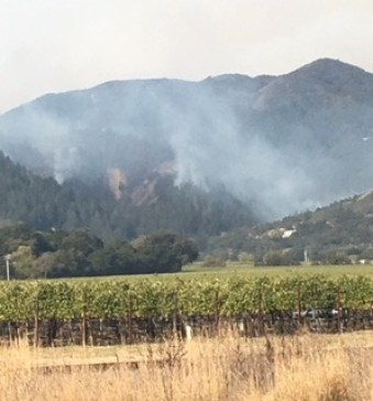 napa fire in Rutherford