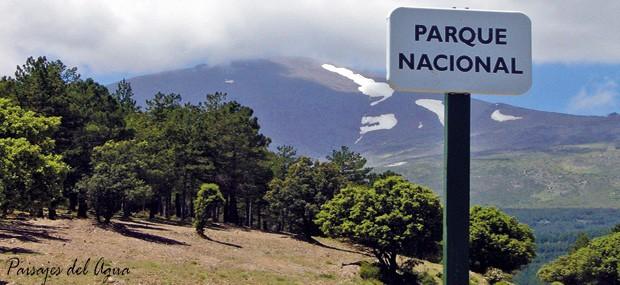 Paisajes del Agua: El 'Bosque Protector' del Marquesado del Zenete y el agua (1/6)