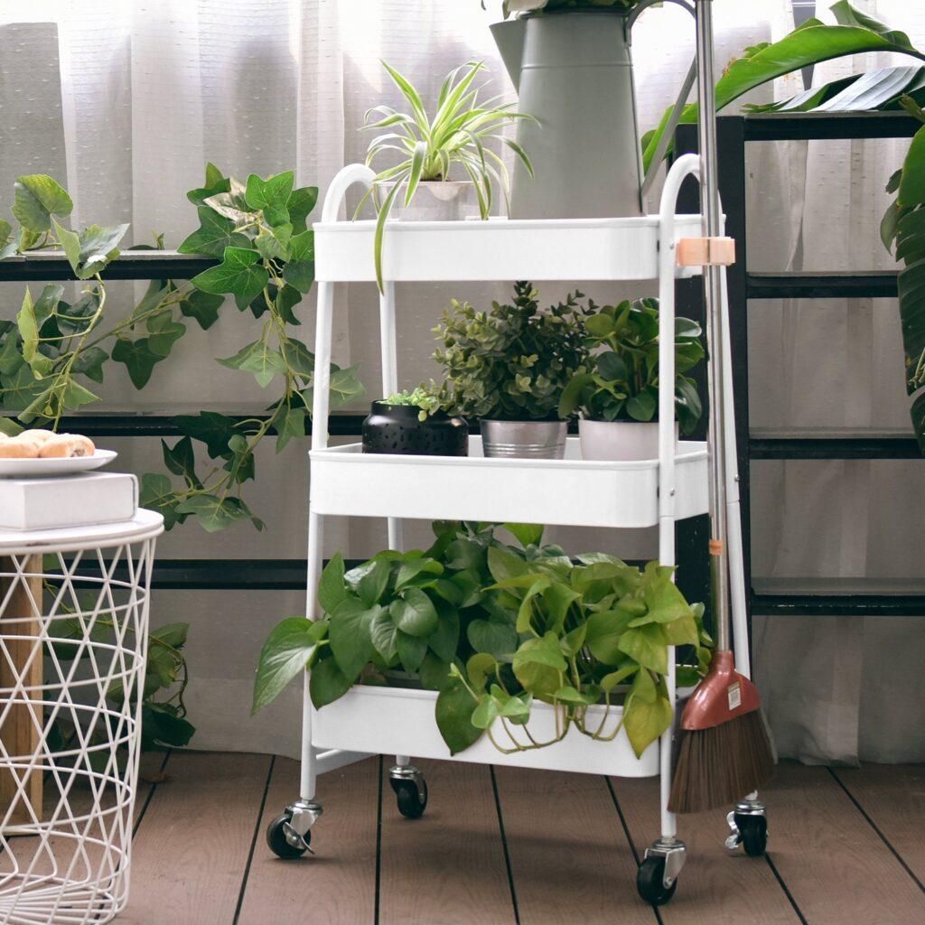 10 Amazing Indoor Plant Stands - Paisley + Sparrow