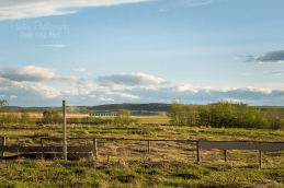 365-Day-142- Calgary Wedding Photographers, Big Alberta Sky