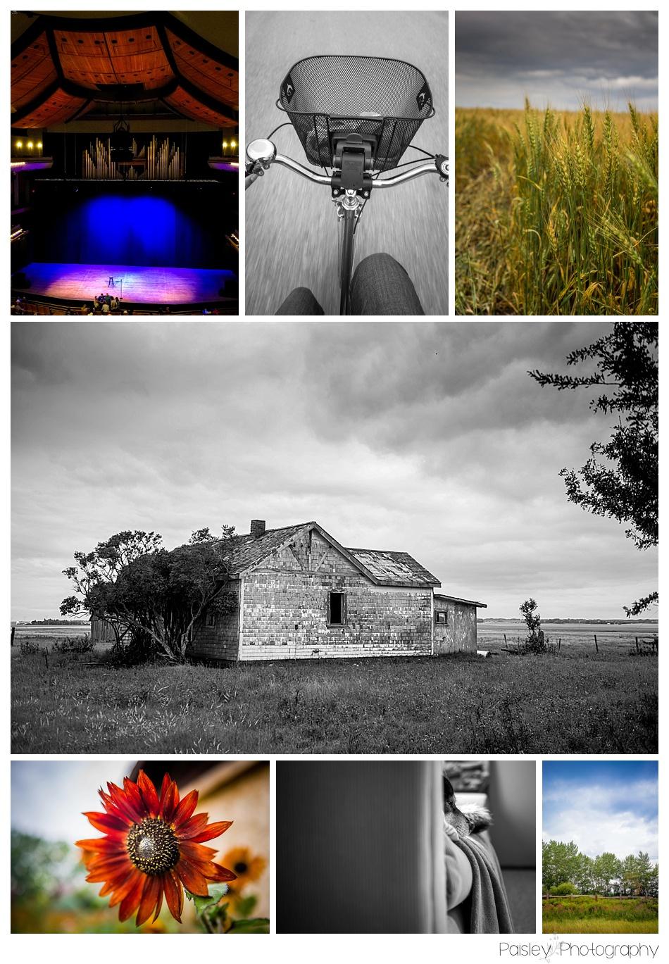 Calgary Family Photgrapher, 365 Photography Project, 365 Photography, Southern Alberta Family Photographer, Calgary Photographer