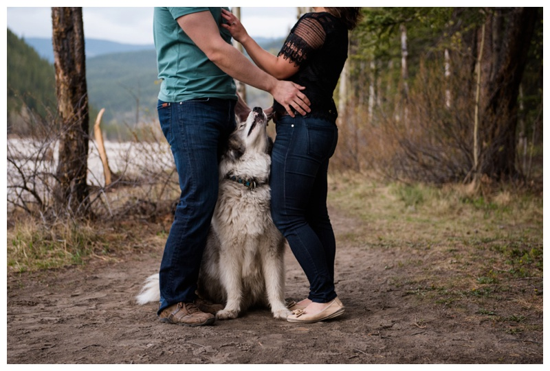 Engagement Photography With Dogs Calgary