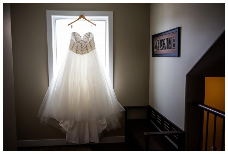 Wedding Dress Photography Hinton