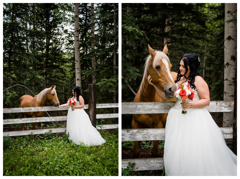 Bride With Horse Wedding Photography
