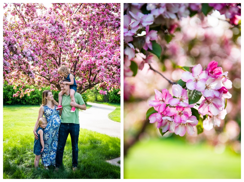 Baker Park Family Photographer Calgary