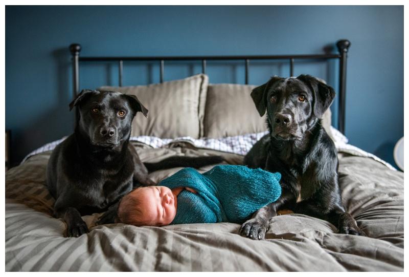In Home Newborn Photography Calgary