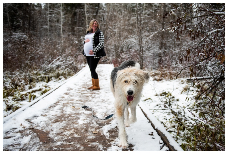 Calgary Winter Maternity Photographer