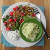 SRC: Falafel, Tzatziki, and Greek Lemon Rice