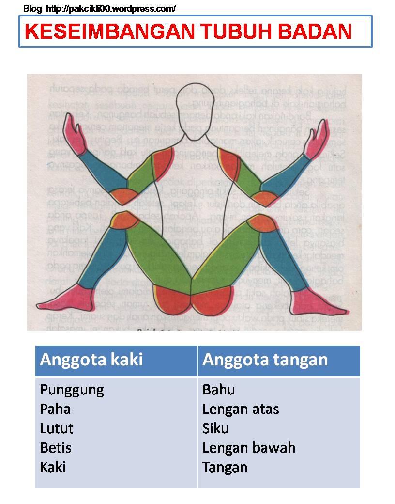 keseimbangan tubuh badan