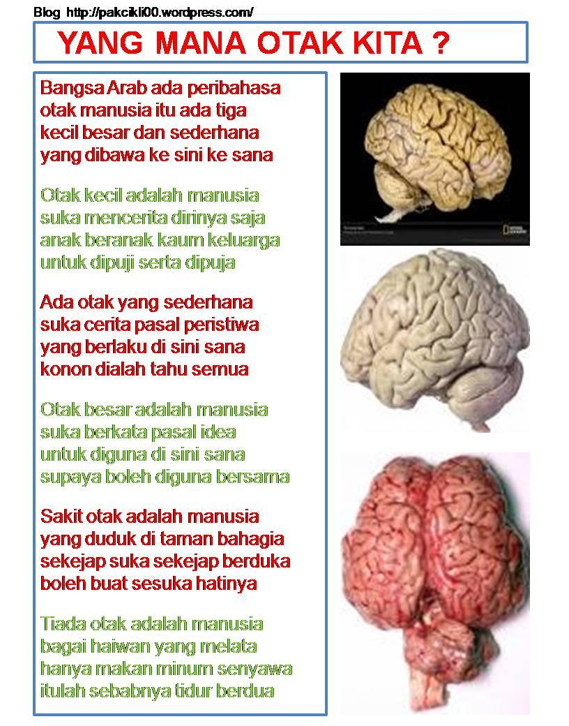yang mana otak kita
