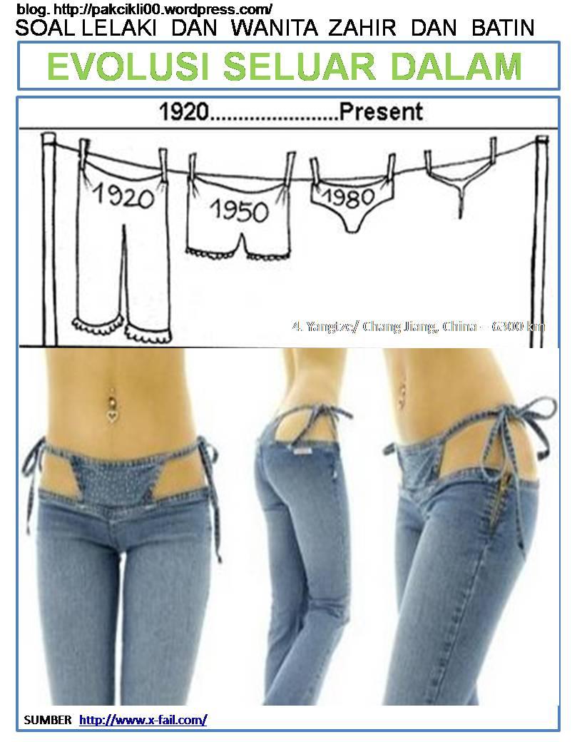 evolusi seluar dalam