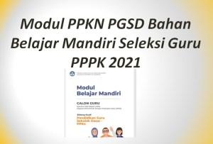 Modul PPKN PGSD Bahan Belajar Mandiri Seleksi Guru PPPK 2021