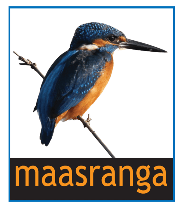 Maasranga TV Frequency