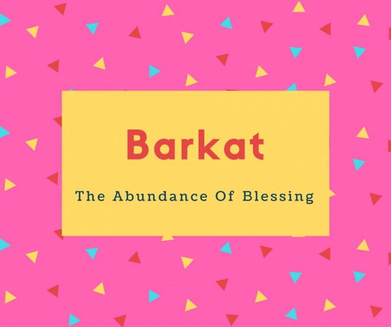 What Is Barkat Name Meaning In Urdu Barkat Meaning Is