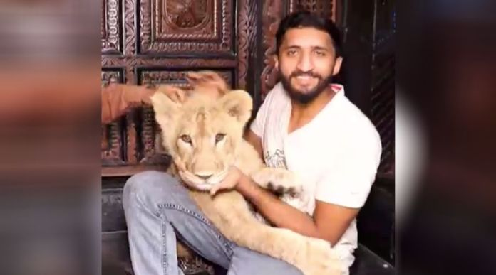 How is it to have a Pet Lion at home in Multan? Watch this.