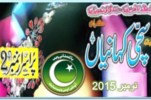 Sachi Kahanian Digest November 2015