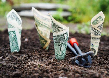 האם באמת אפשר להרוויח כסף משיווק שותפים ?