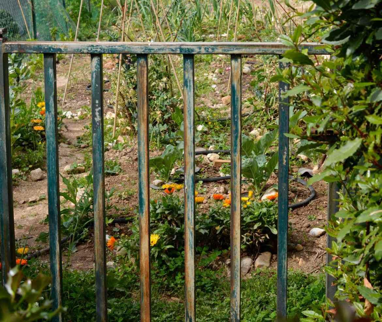 garden may gate