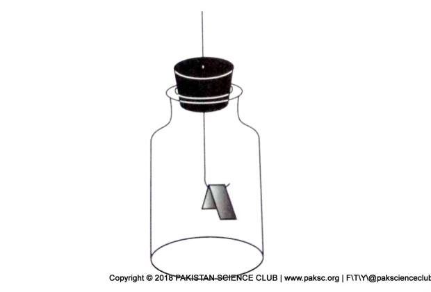 How to make an Electroscope