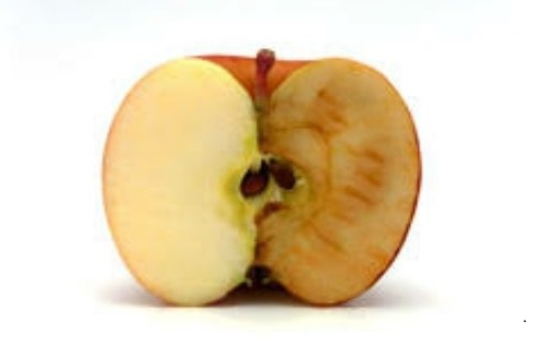 science fair project keep an apple from turning brown