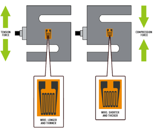 Load Cell System