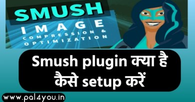 smush plugin pal4you