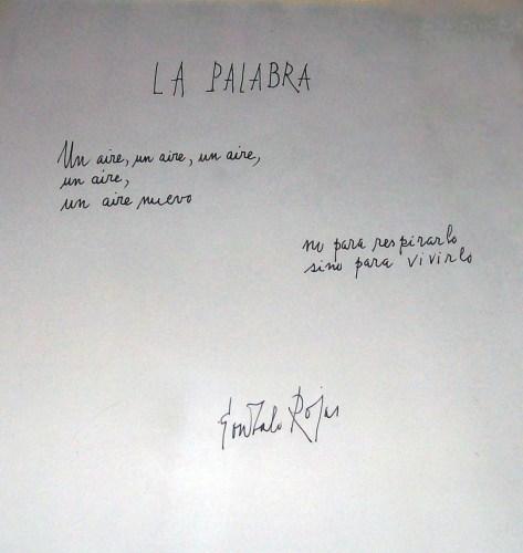 La palabra, Gonzalo Rojas