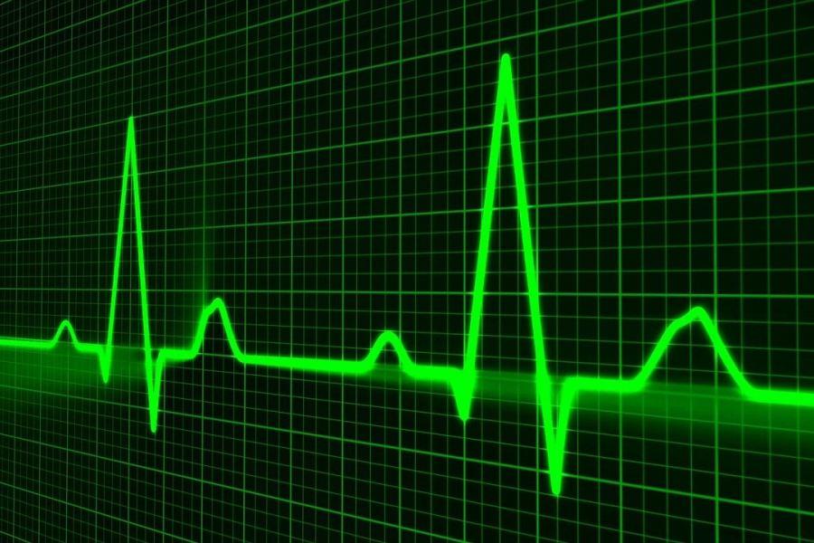 zielony wykres pulsu na ekranie